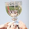 Coupe champion - Coach d'entreprise